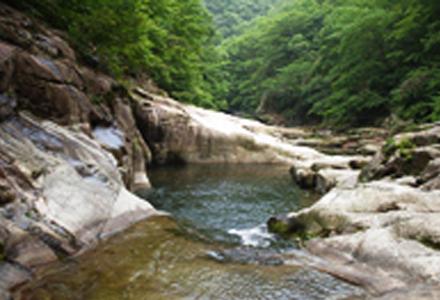 장안산군립공원